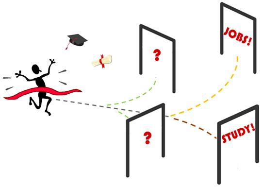 Graduate's options / paths / choices / decisions