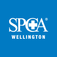 spca-wellington