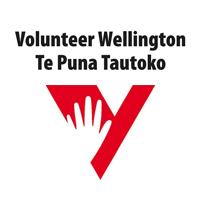 volunteer-wellington
