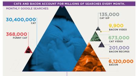 cats&bacon